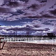 Winters Beach Solitude Art Print