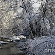 Winter's Canvas Art Print