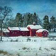 Winter's Colors Art Print