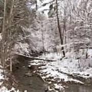 Winter's Country Stream Art Print