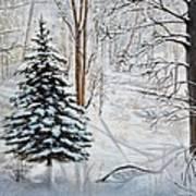 Winter's Peace Art Print