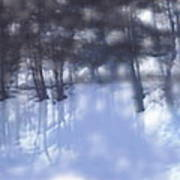 Winters' Shadow Art Print