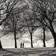 Winters Walk Art Print