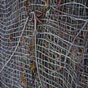 Wire Mesh Art Print