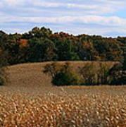 Wisconsin Fields In Late Summer Art Print
