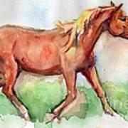 Horse Painted In Watercolor Wisdom Art Print