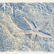 Wish Upon A Star Art Print