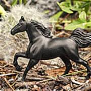 Wishing Horse Art Print