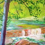 Wissahickon Art Print