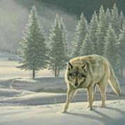 Wolf In Fog    Art Print
