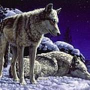 Wolf Painting - Night Watch Art Print by Crista Forest