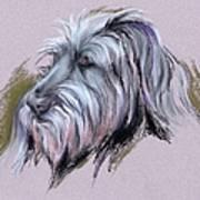 Wolfhound Portrait Art Print
