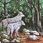 Wolves In South Dakota Art Print