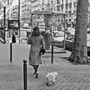 Woman In Paris Walking Dog Art Print