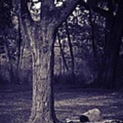 Woman Under A Tree Art Print