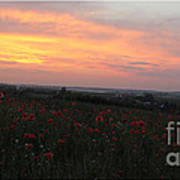 Wonderful Poppy Fields Galicia. Art Print