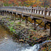 Wood Bridge And Autumn Color Art Print