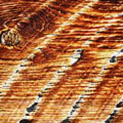 #woodgrain Art Print
