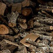 Wood Logs Art Print
