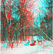 Wooded Path - Use Red And Cyan Filtered 3d Glasses Art Print