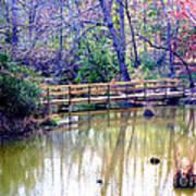 Wooden Bridge Over Pond Art Print