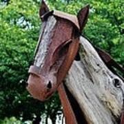 Wooden Horse20 Art Print
