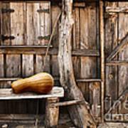 Wooden Shack Art Print by Carlos Caetano