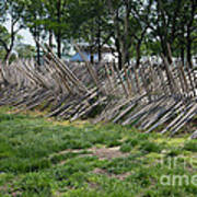 Wooden Spiked Fence Art Print