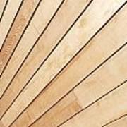 Wooden Texture Art Print
