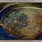 Woodeye Art Print