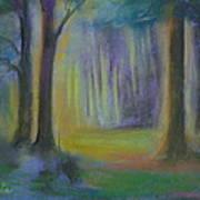 Woodland At Wilsonia Art Print
