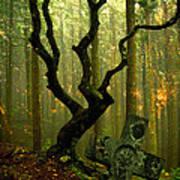 Woodland Burial Art Print