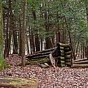 Woodland Cabin Ruins Art Print