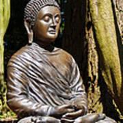Woodland Meditation Art Print