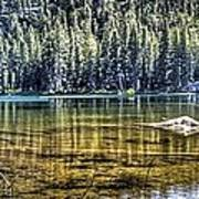 Woods Lake 3 Art Print