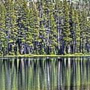 Woods Lake 4 Art Print