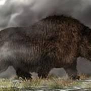 Woolly Rhinoceros Art Print