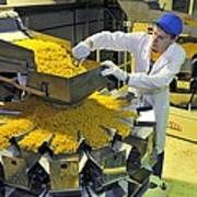 Worker With Pasta Packing Machine Art Print by Science Photo Library