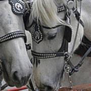 Working Horses Art Print