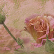 World Peace Roses With Texture Art Print