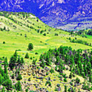 Wyoming Hillside Art Print