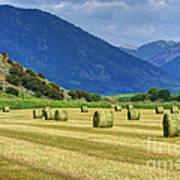 Wyoming Mountain Hay Farm Art Print