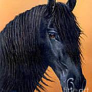 Wytse Art Print by Jurek Zamoyski