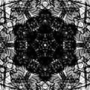 X-ray Of A Snowflake Art Print