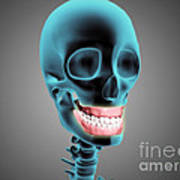 X-ray View Of Human Skeleton Showing Print by Stocktrek Images