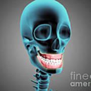 X-ray View Of Human Skeleton Showing Art Print