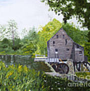 Yates Mill Summer Art Print