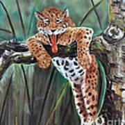 Yawning Leopard Art Print