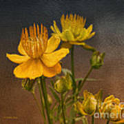 Yellow Aged Floral Art Print