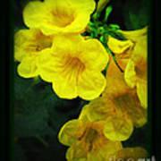 Yellow - Amarillo - Jaune Art Print